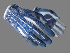 ★ Спортивные перчатки | Амфибия