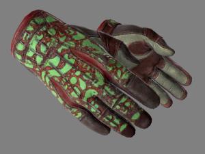 ★ Спортивные перчатки | Bronze Morph