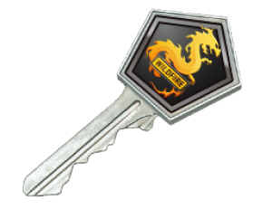 Ключ от кейса операции «Дикое пламя»