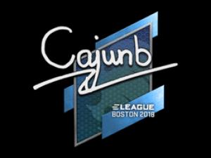 Наклейка | cajunb | Бостон 2018